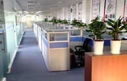 深圳总部办公室内景